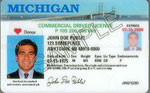 michigan-license-sample.jpg