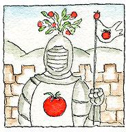 Tomatoe Knight