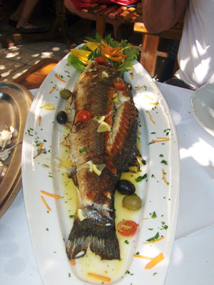 grilled-sea-bass-in-hvar