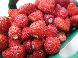 wildstawberries.jpg