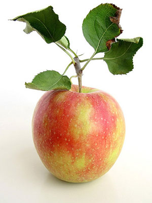 odeapple