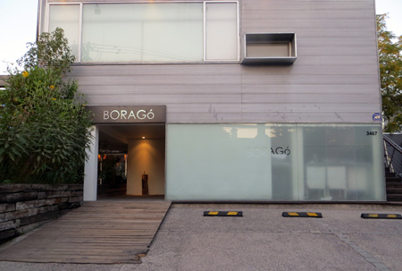Borago1
