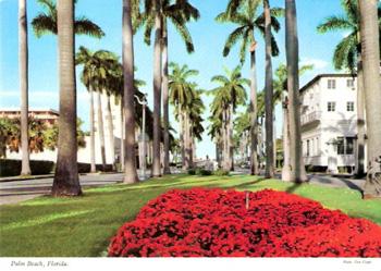 palmbeachflorida.jpg