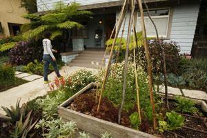 lat-la-fo-garden-la0008922020-20130319