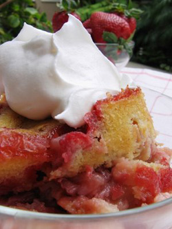 strawberryrhubarb1.jpg